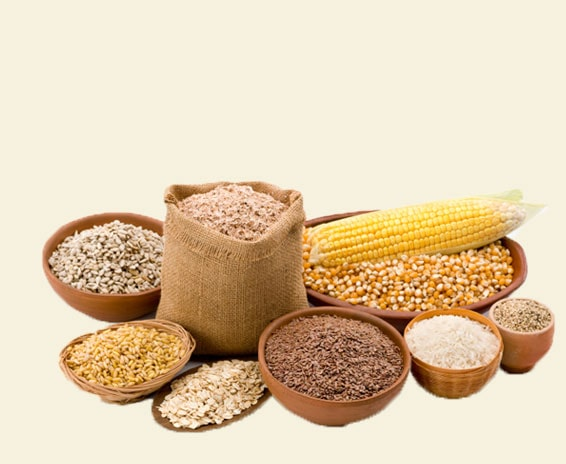 GRAIN-and-CEREALS